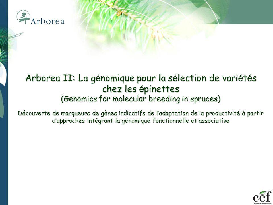 Analyse de lexpression génique 1 2 3 4 5 6 7 8 9 10 11 12 nc/pc A: Expression chez cals infectésB: Expression chez cals sains ~30% des gènes sont surexprimés en présence du pathogène Plusieurs dizaines de ces gènes sont homologues à des gènes de résistance (R) connus chez dautres plantes 1 2 3 4 5 6 7 8 9 10 11 12 nc/pc A B C D E F G H A B C D E F G H Comparaison de macroarrays (96 gènes/membrane) Lorme dAmérique, bien que très sensible à la MHO, possède des gènes R qui pourraient guider les améliorateurs