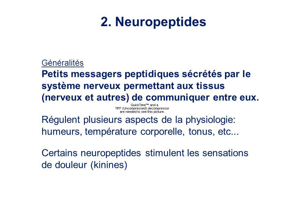 Généralités Petits messagers peptidiques sécrétés par le système nerveux permettant aux tissus (nerveux et autres) de communiquer entre eux. Régulent