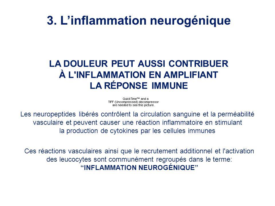 LA DOULEUR PEUT AUSSI CONTRIBUER À L'INFLAMMATION EN AMPLIFIANT LA RÉPONSE IMMUNE Les neuropeptides libérés contrôlent la circulation sanguine et la p
