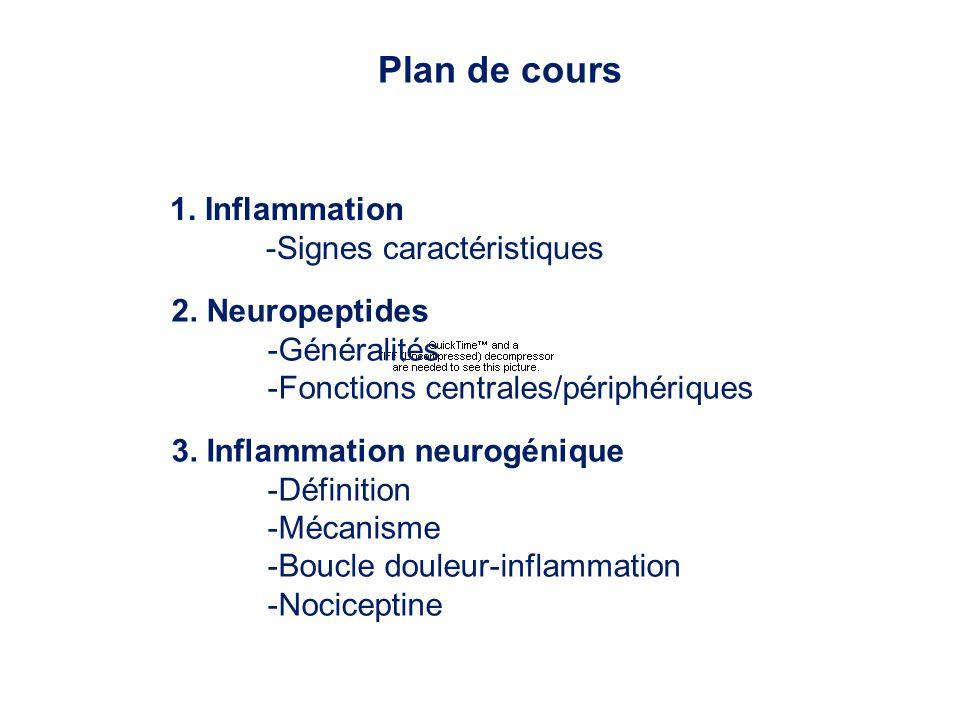 Plan de cours 1. Inflammation -Signes caractéristiques 2. Neuropeptides -Généralités -Fonctions centrales/périphériques 3. Inflammation neurogénique -