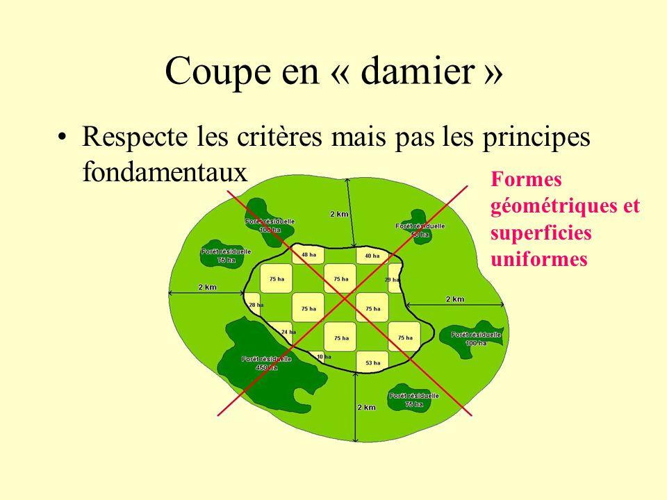 Coupe en « damier » Respecte les critères mais pas les principes fondamentaux Formes géométriques et superficies uniformes