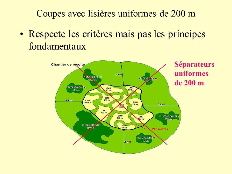Coupes avec lisières uniformes de 200 m Respecte les critères mais pas les principes fondamentaux Séparateurs uniformes de 200 m