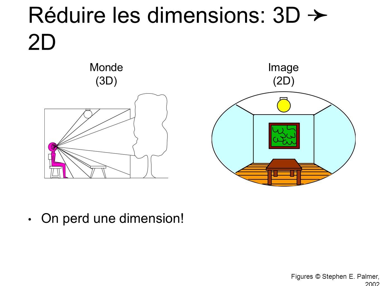 Figures © Stephen E.Palmer, 2002 Réduire les dimensions: 3D 2D On perd une dimension.