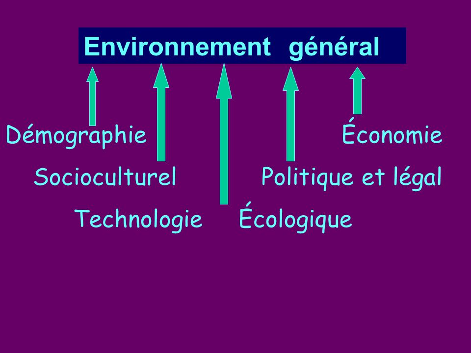 Environnement général Démographie Économie Socioculturel Politique et légal Technologie Écologique