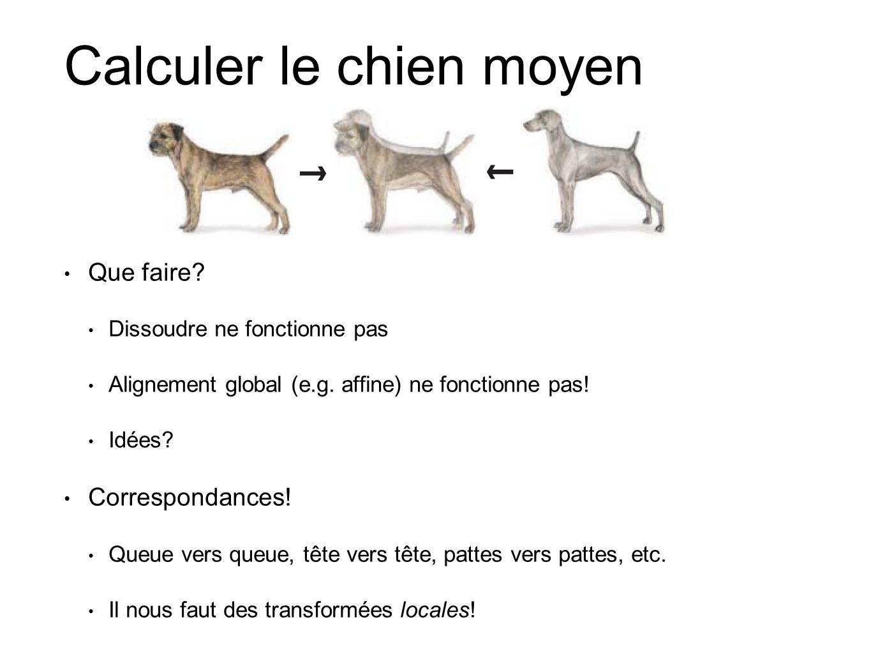 Calculer le chien moyen Que faire? Dissoudre ne fonctionne pas Alignement global (e.g. affine) ne fonctionne pas! Idées? Correspondances! Queue vers q