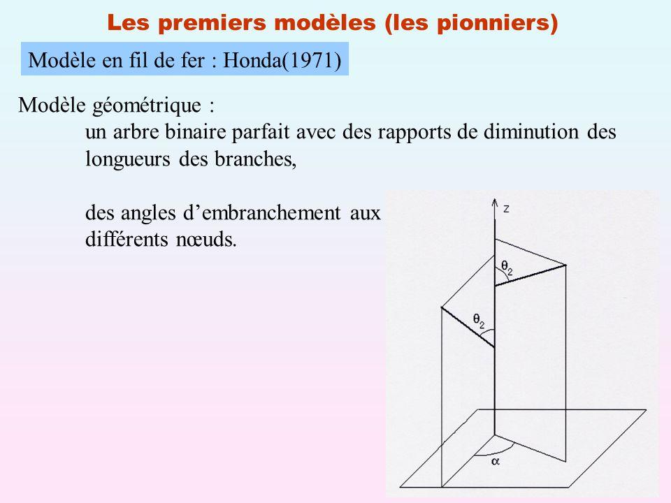 17 Les premiers modèles (les pionniers) Modèle en fil de fer : Honda(1971) Modèle géométrique : un arbre binaire parfait avec des rapports de diminution des longueurs des branches, des angles dembranchement aux différents nœuds.