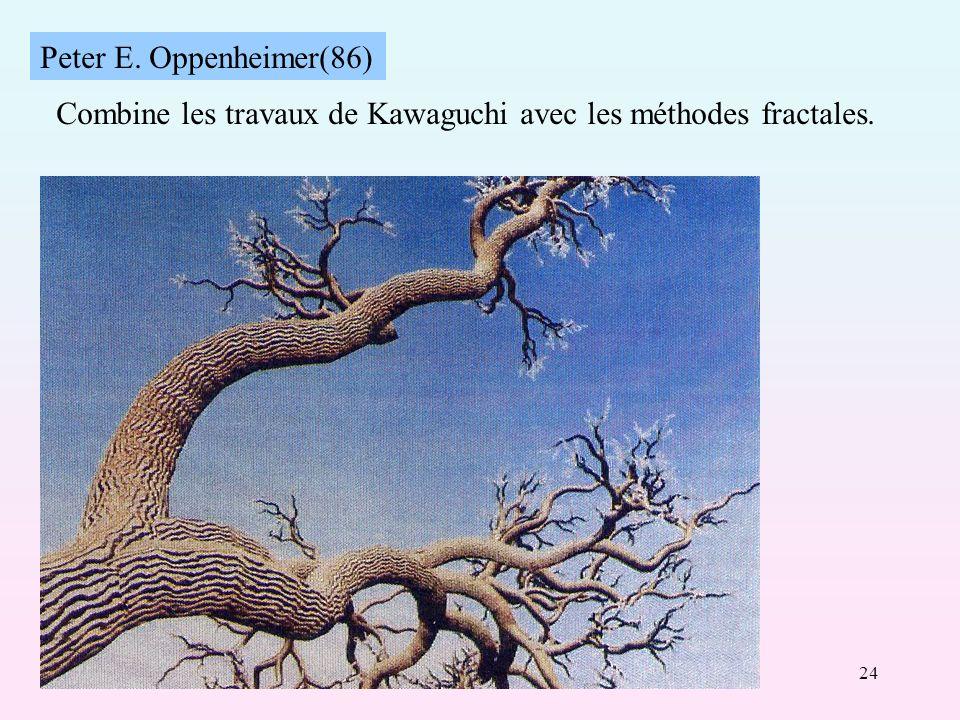 24 Peter E. Oppenheimer(86) Combine les travaux de Kawaguchi avec les méthodes fractales.