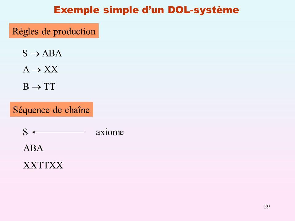 29 Exemple simple dun DOL-système Règles de production S ABA A XX B TT Séquence de chaîne S ABA XXTTXX axiome