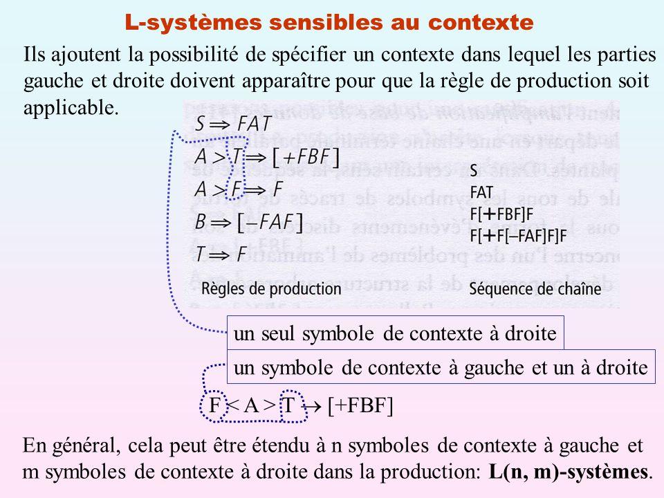 L-systèmes sensibles au contexte Ils ajoutent la possibilité de spécifier un contexte dans lequel les parties gauche et droite doivent apparaître pour que la règle de production soit applicable.