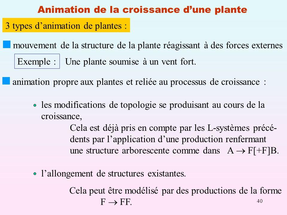 40 Animation de la croissance dune plante 3 types danimation de plantes : mouvement de la structure de la plante réagissant à des forces externes Exemple : Une plante soumise à un vent fort.