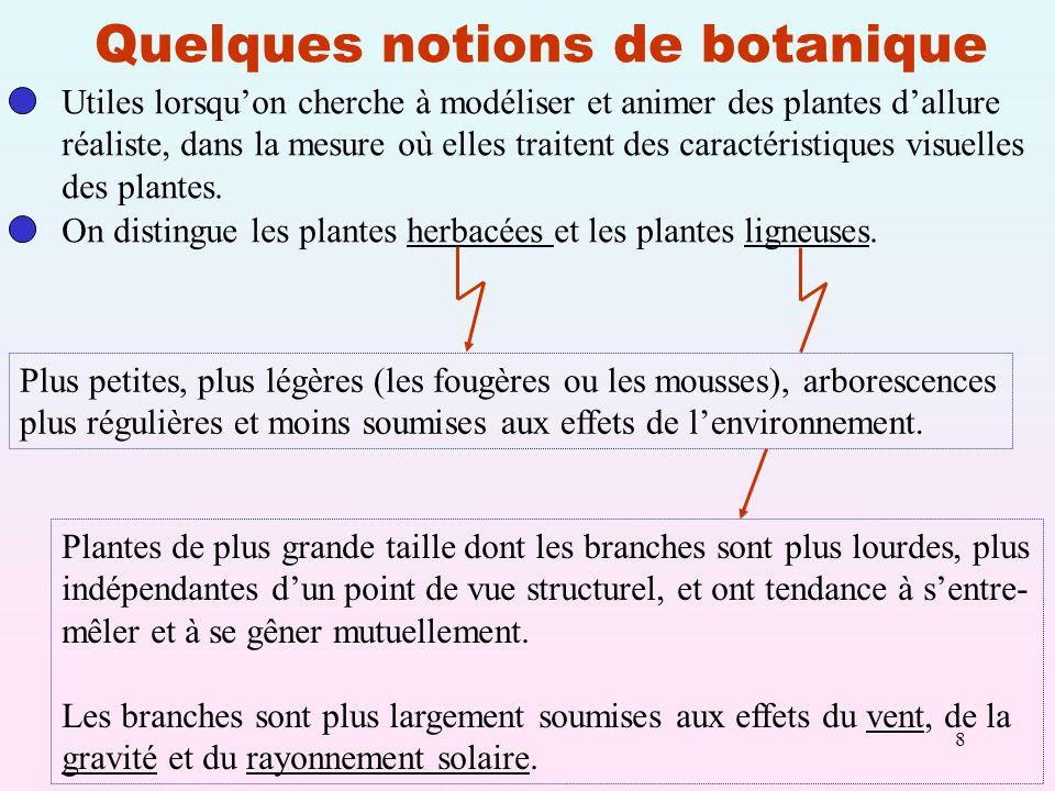 8 Quelques notions de botanique Utiles lorsquon cherche à modéliser et animer des plantes dallure réaliste, dans la mesure où elles traitent des caractéristiques visuelles des plantes.