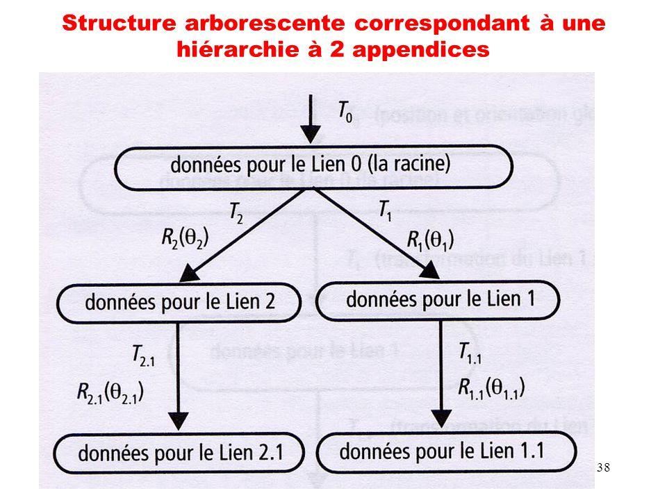 38 Structure arborescente correspondant à une hiérarchie à 2 appendices