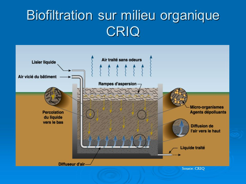 Biofiltration sur milieu organique CRIQ Source: CRIQ