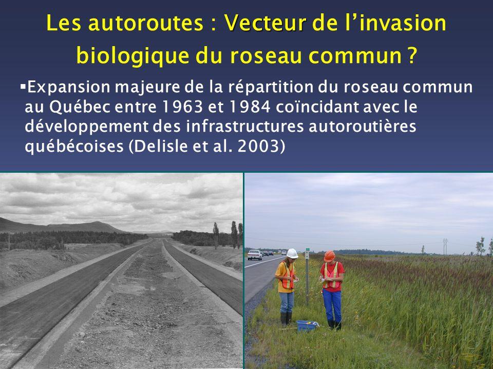 Vecteur Les autoroutes : Vecteur de linvasion biologique du roseau commun ? Expansion majeure de la répartition du roseau commun au Québec entre 1963