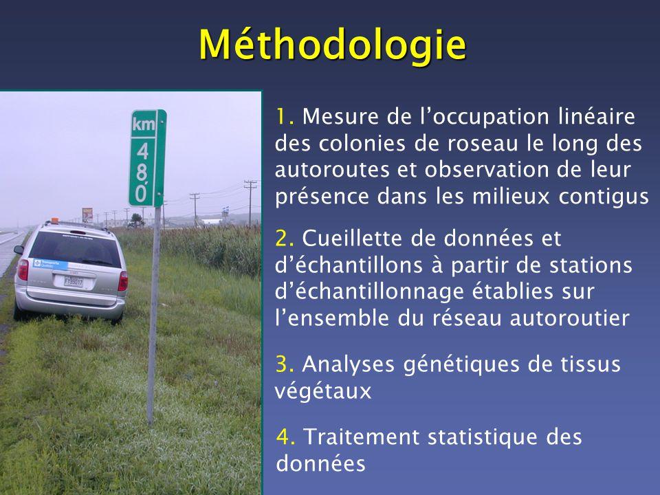 Méthodologie 1. Mesure de loccupation linéaire des colonies de roseau le long des autoroutes et observation de leur présence dans les milieux contigus