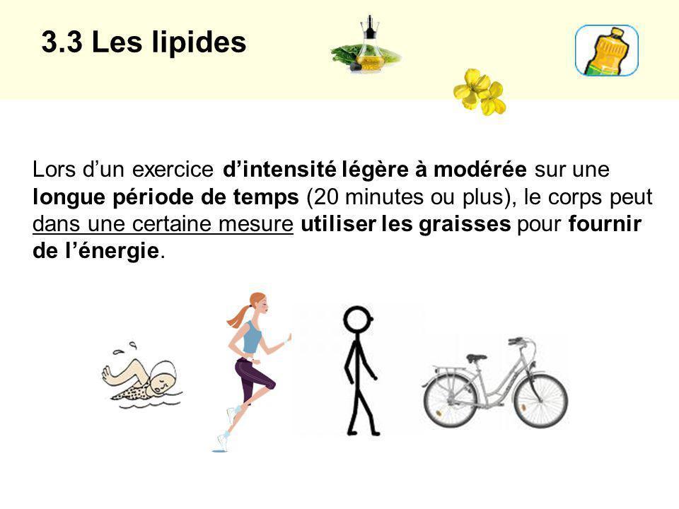 3.3 Les lipides Lors dun exercice dintensité légère à modérée sur une longue période de temps (20 minutes ou plus), le corps peut dans une certaine me