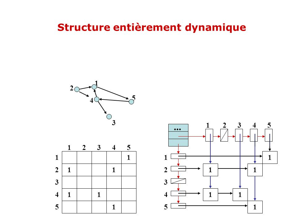 1 11 11 1 12345 1 2 3 4 5 4 2 5 3 1 1 2 3 4 5 1 11 11 1... Structure entièrement dynamique