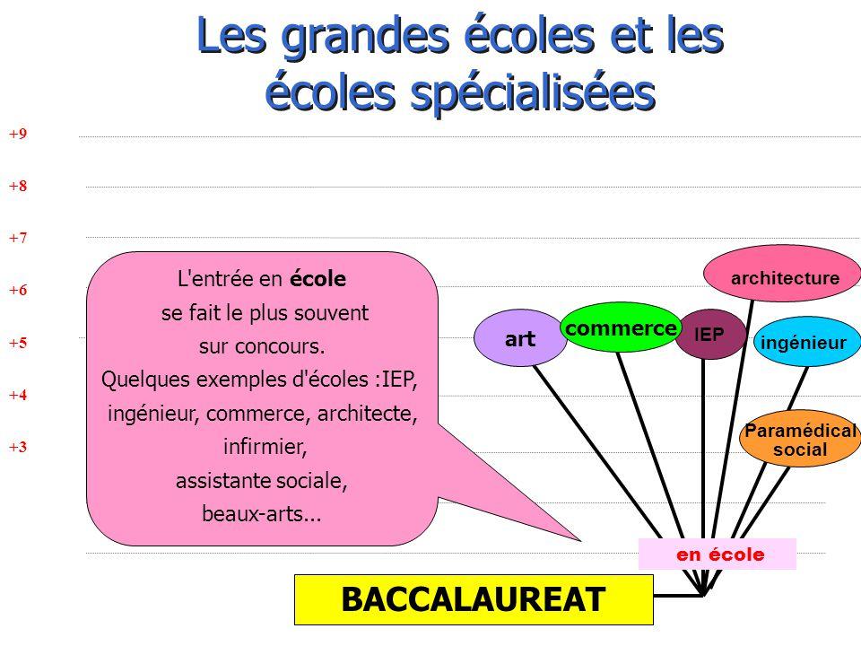 Les grandes écoles et les écoles spécialisées +9 +8 +7 +6 +5 +4 +3 Paramédical social BACCALAUREAT architecture ingénieur L'entrée en école se fait le