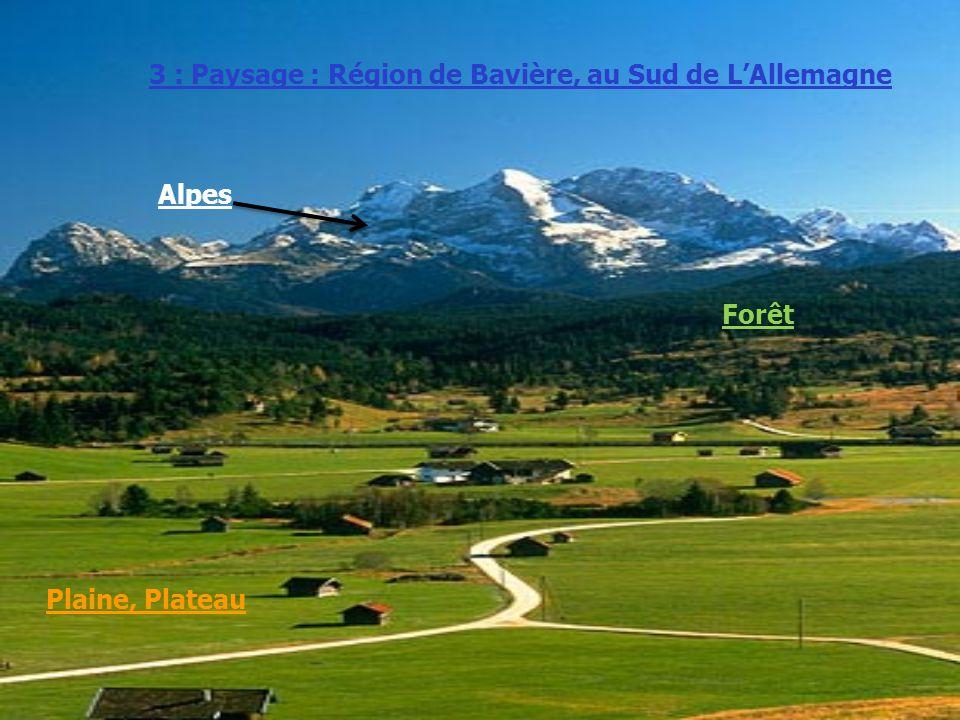 Alpes 3 : Paysage : Région de Bavière, au Sud de LAllemagne Forêt Plaine, Plateau