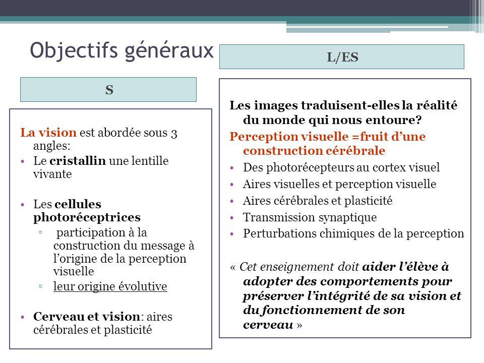 Objectifs généraux S L/ES La vision est abordée sous 3 angles: Le cristallin une lentille vivante Les cellules photoréceptrices participation à la con