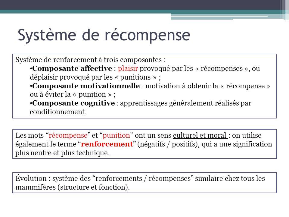 Système de récompense Système de renforcement à trois composantes : Composante affective : plaisir provoqué par les « récompenses », ou déplaisir prov