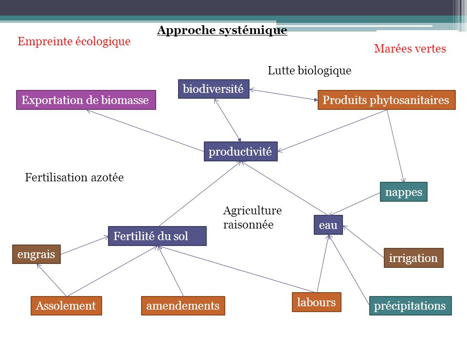 eau productivité Fertilité du sol biodiversité Produits phytosanitaires Assolementamendements labours engrais irrigation nappes Exportation de biomass