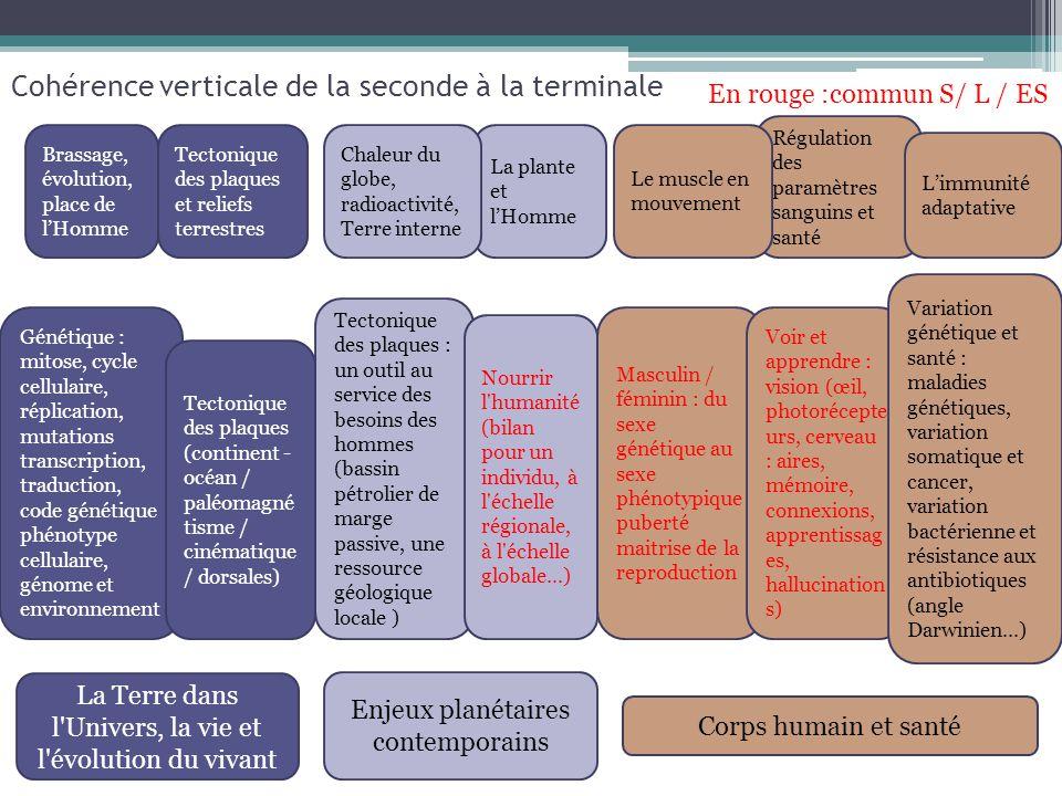 Cohérence verticale de la seconde à la terminale En rouge :commun S/ L / ES La Terre dans l'Univers, la vie et l'évolution du vivant Enjeux planétaire