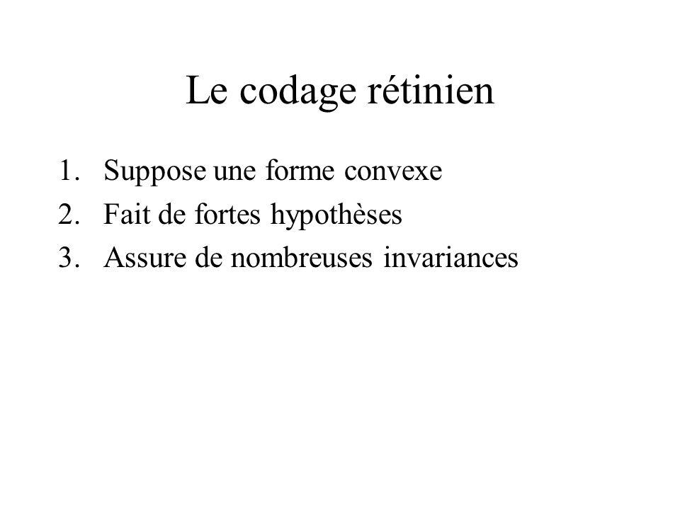 Le codage rétinien 1.Suppose une forme convexe 2.Fait de fortes hypothèses 3.Assure de nombreuses invariances