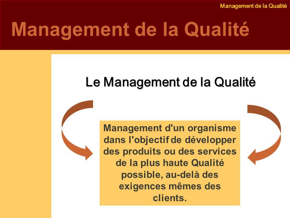 Emmanuel Delannoy e.delannoy@noolithic.com www.noolithic.com Le Management de la Qualité Management d un organisme dans l objectif de développer des produits ou des services de la plus haute Qualité possible, au-delà des exigences mêmes des clients.