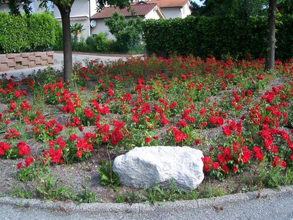 Le Salève qui fait frontière entre la Suisse et la France