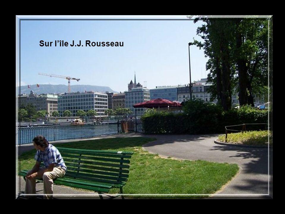 Sur lîle J.J. Rousseau