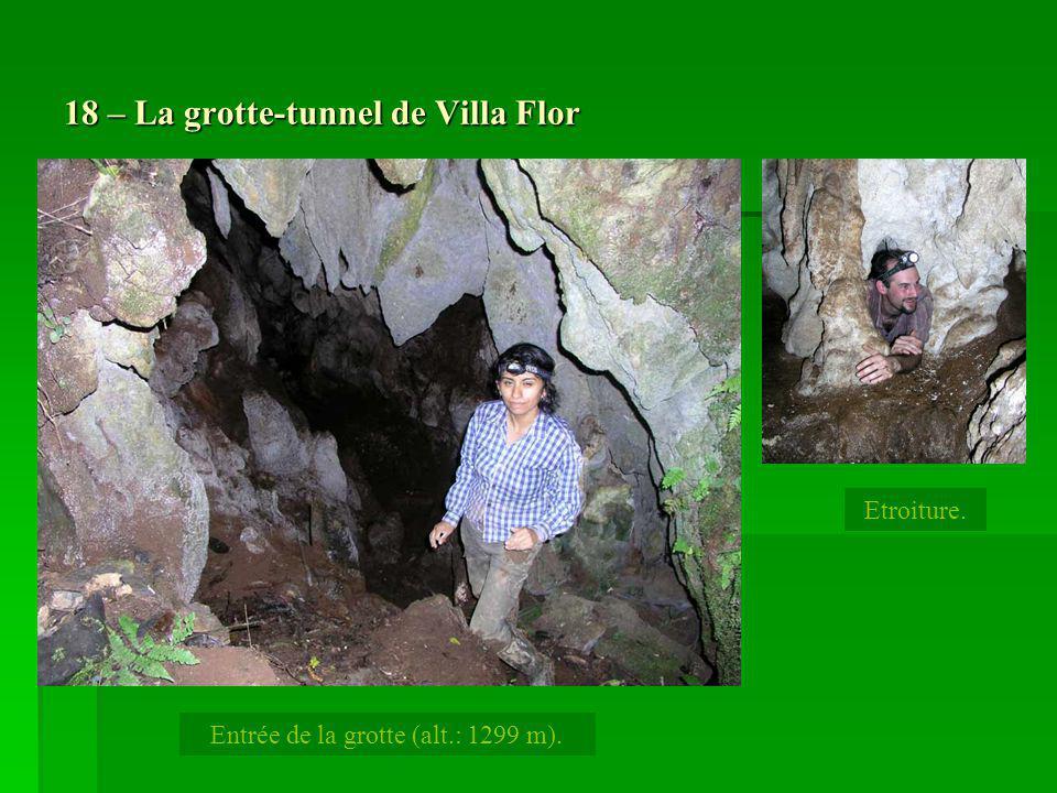 18 – La grotte-tunnel de Villa Flor Etroiture. Entrée de la grotte (alt.: 1299 m).