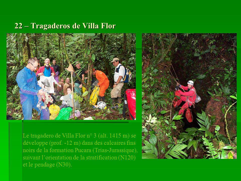 22 – Tragaderos de Villa Flor Le tragadero de Villa Flor n° 3 (alt. 1415 m) se développe (prof. -12 m) dans des calcaires fins noirs de la formation P
