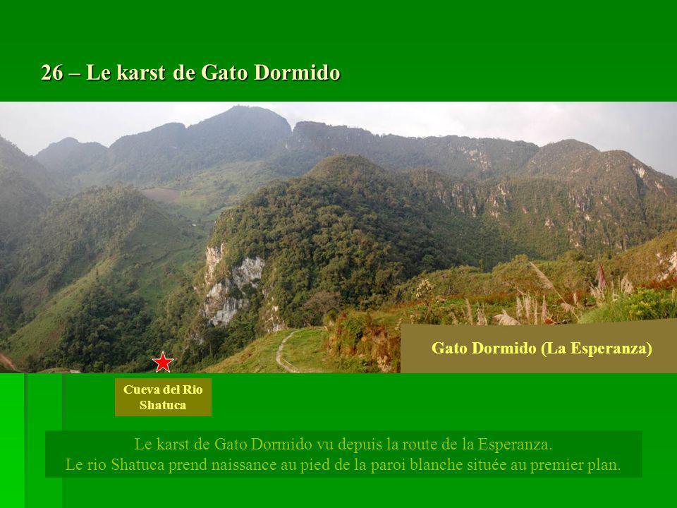 26 – Le karst de Gato Dormido Le karst de Gato Dormido vu depuis la route de la Esperanza. Le rio Shatuca prend naissance au pied de la paroi blanche