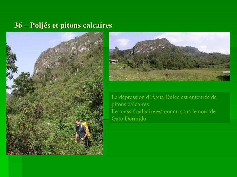 36 – Poljés et pitons calcaires La dépression dAgua Dulce est entourée de pitons calcaires. Le massif calcaire est connu sous le nom de Gato Dormido.