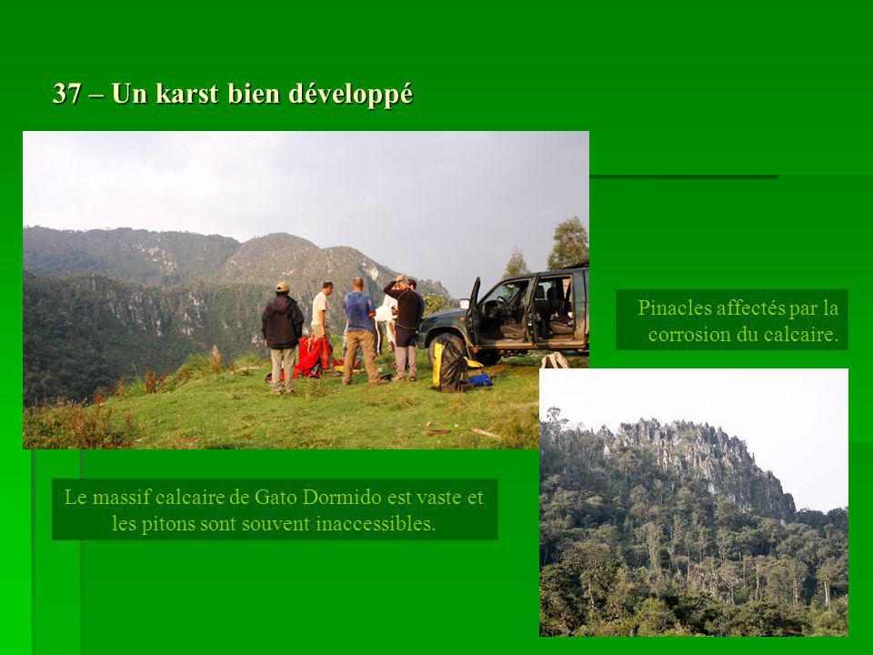 37 – Un karst bien développé Le massif calcaire de Gato Dormido est vaste et les pitons sont souvent inaccessibles. Pinacles affectés par la corrosion