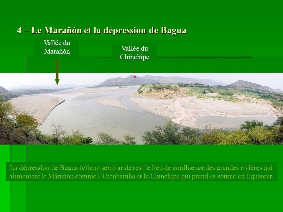 4 – Le Marañón et la dépression de Bagua La dépression de Bagua (climat semi-aride) est le lieu de confluence des grandes rivières qui alimentent le M