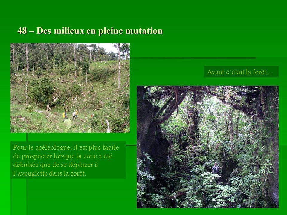 48 – Des milieux en pleine mutation Pour le spéléologue, il est plus facile de prospecter lorsque la zone a été déboisée que de se déplacer à laveugle