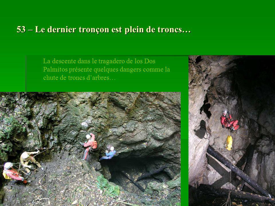 53 – Le dernier tronçon est plein de troncs… La descente dans le tragadero de los Dos Palmitos présente quelques dangers comme la chute de troncs darb