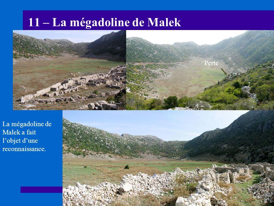 11 – La mégadoline de Malek La mégadoline de Malek a fait lobjet dune reconnaissance. Perte