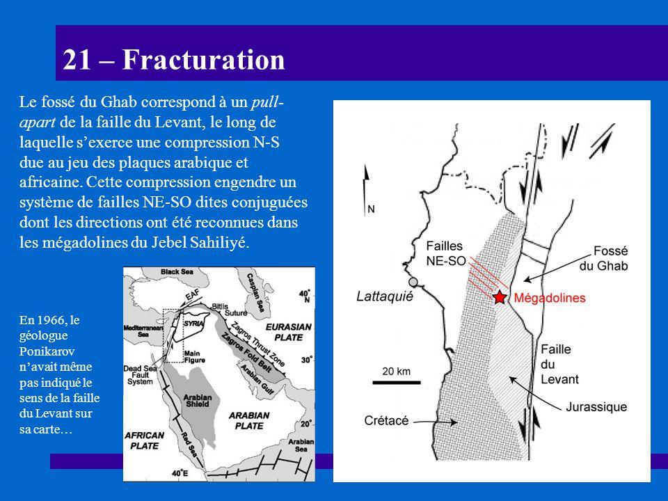 21 – Fracturation Le fossé du Ghab correspond à un pull- apart de la faille du Levant, le long de laquelle sexerce une compression N-S due au jeu des