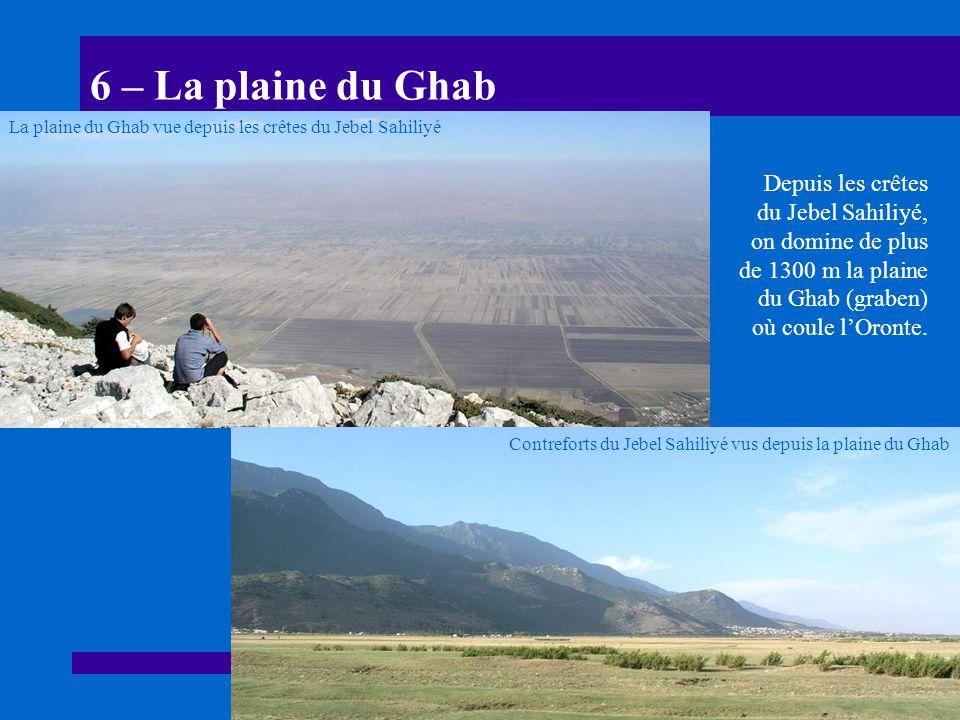 6 – La plaine du Ghab Depuis les crêtes du Jebel Sahiliyé, on domine de plus de 1300 m la plaine du Ghab (graben) où coule lOronte. Contreforts du Jeb