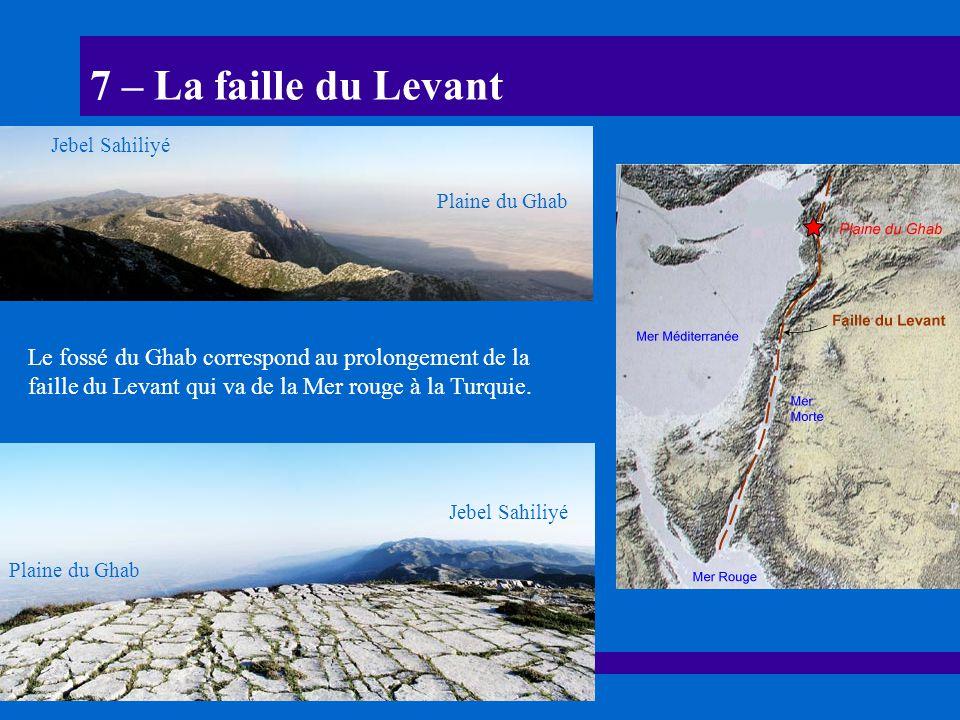 7 – La faille du Levant Le fossé du Ghab correspond au prolongement de la faille du Levant qui va de la Mer rouge à la Turquie. Plaine du Ghab Jebel S