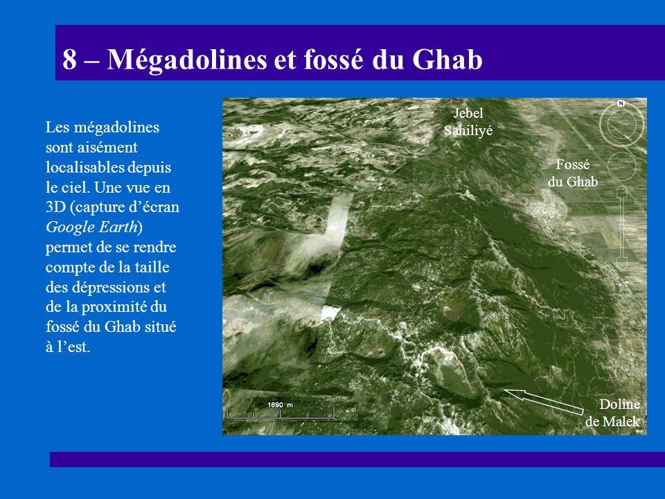 8 – Mégadolines et fossé du Ghab Les mégadolines sont aisément localisables depuis le ciel. Une vue en 3D (capture décran Google Earth) permet de se r