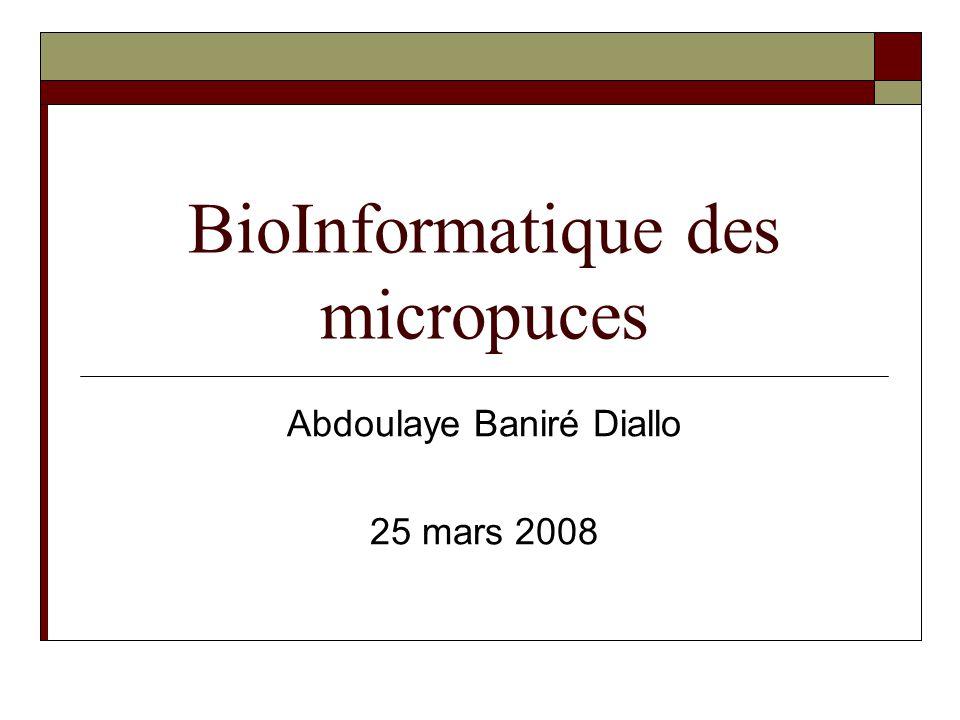 BioInformatique des micropuces Abdoulaye Baniré Diallo 25 mars 2008