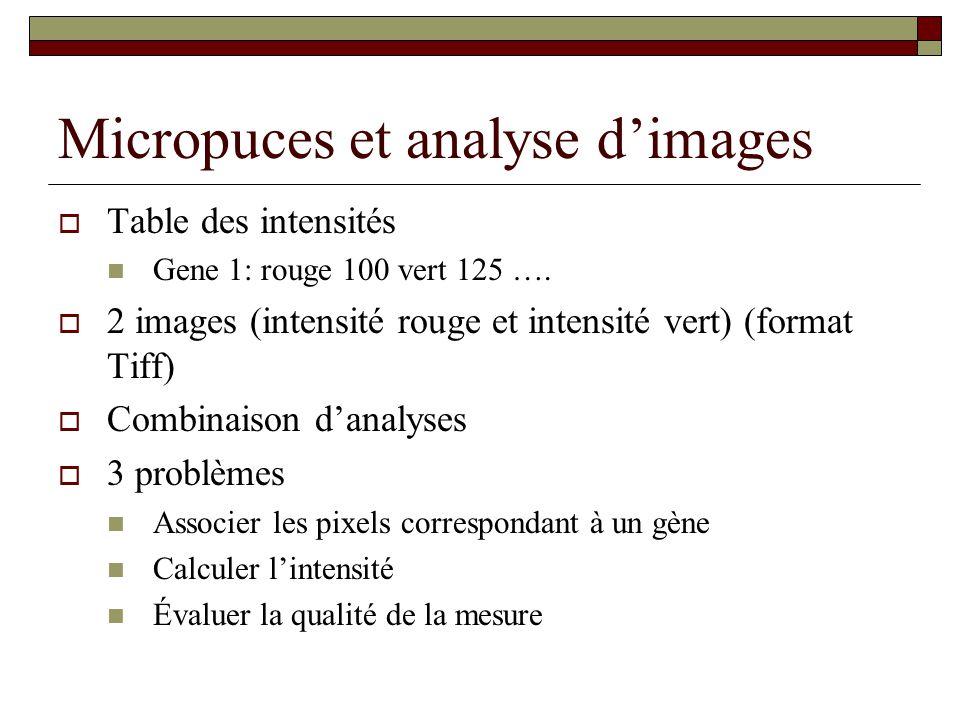 Micropuces et analyse dimages Table des intensités Gene 1: rouge 100 vert 125 …. 2 images (intensité rouge et intensité vert) (format Tiff) Combinaiso