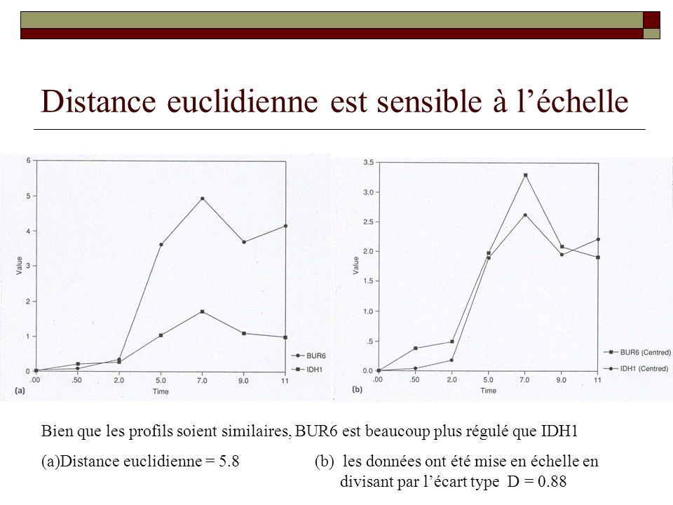 Distance euclidienne est sensible à léchelle Bien que les profils soient similaires, BUR6 est beaucoup plus régulé que IDH1 (a)Distance euclidienne =