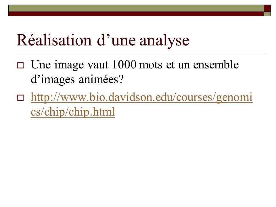 Réalisation dune analyse Une image vaut 1000 mots et un ensemble dimages animées? http://www.bio.davidson.edu/courses/genomi cs/chip/chip.html http://