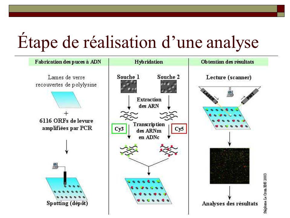 Étape de réalisation dune analyse