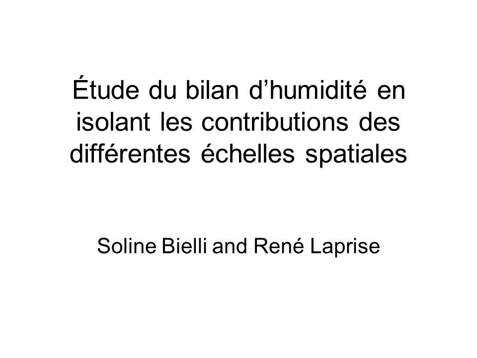 Étude du bilan dhumidité en isolant les contributions des différentes échelles spatiales Soline Bielli and René Laprise